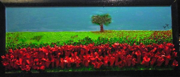 campo di fiori rossi: www.maxgallery.net/tulirossi.html